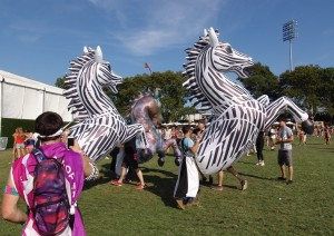 EZOO Zebras