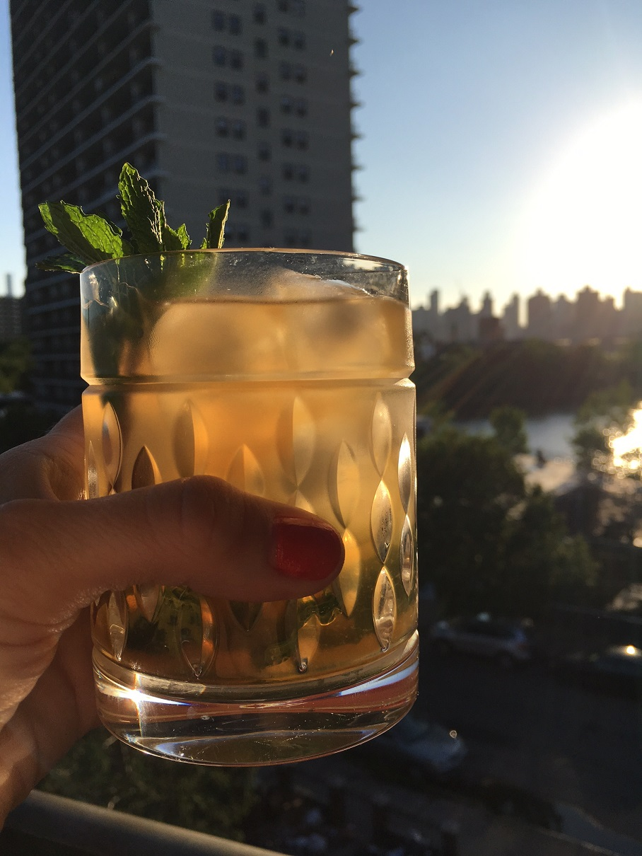 Simple Summer Cocktail Recipes Mojito Shot