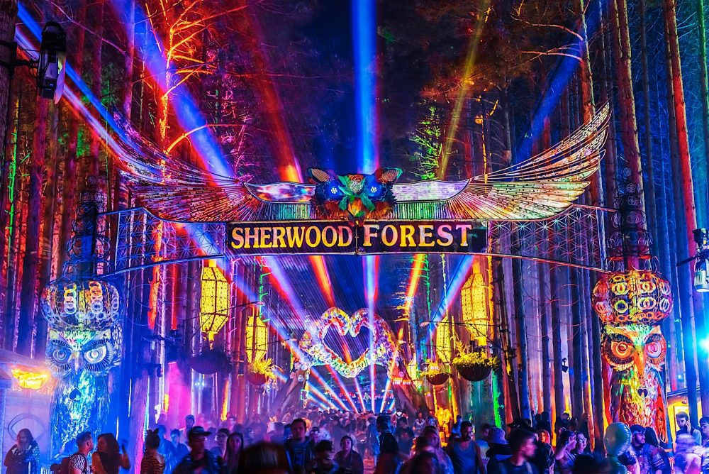the forest 2019